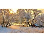 Snowy Trees Winter Sunset House Android Wallpapers For Free