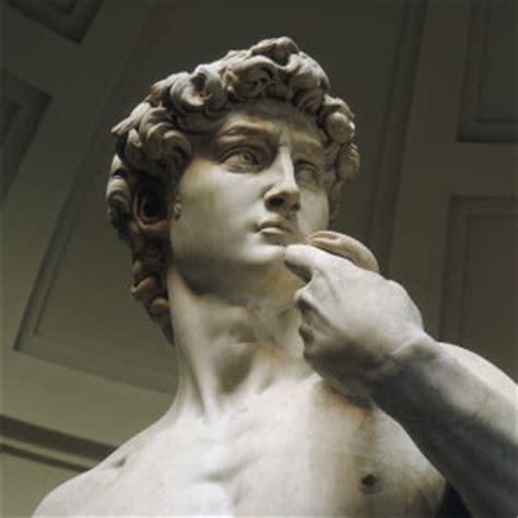michelangelo david western civilization ii and art history pictures to
