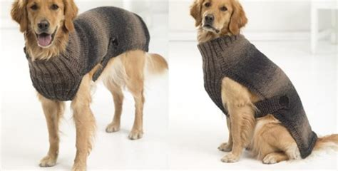pattern for xl dog coat hunter s urban knitted dog sweater free knitting pattern