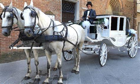 cavalli e carrozze cavalli e carrozze al di donnafugata ragusa