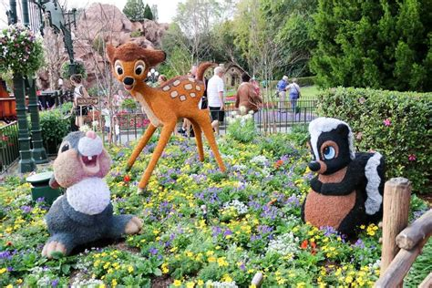 eppie in pictures epcot flower and garden festival