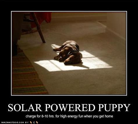 solar energy quotes  sayings quotesgram