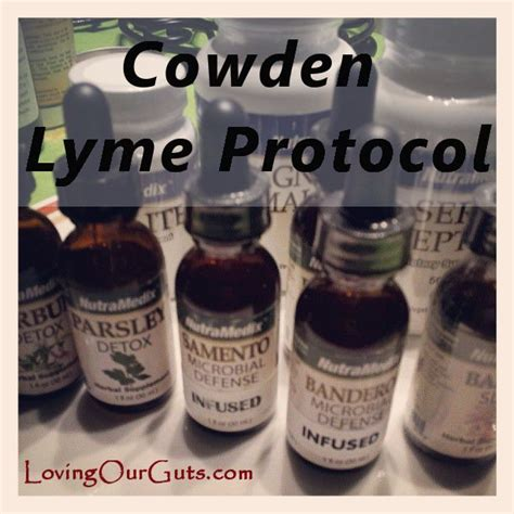 Lyme Detox Supplements by 34 Best Images About Lyme On Harrods Watches