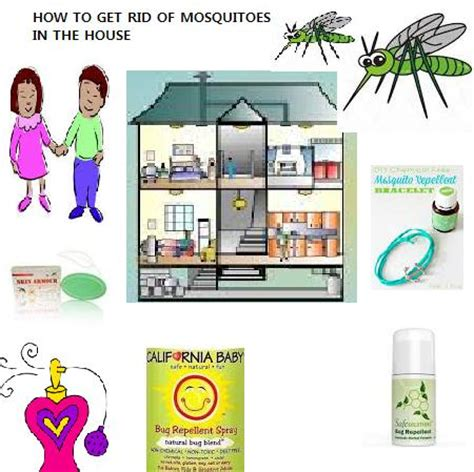 how to get rid of mosquitoes inside your house how to get rid of mosquitoes how to get rid of mosquitoes inside the house