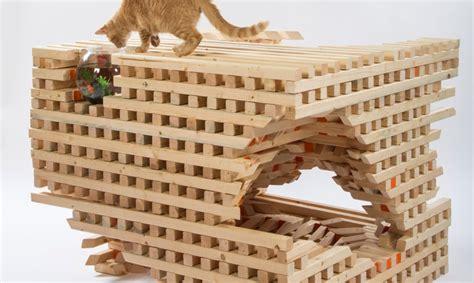 membuat rumah untuk kucing desain arsitektur rumah kucing yang unik mancanegara