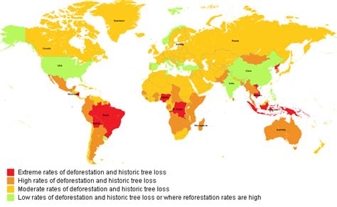 south america deforestation map the impacts of deforestation globusgreen