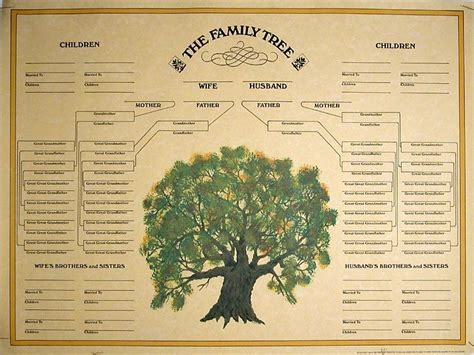 genealogy of the claflin family being a record of robert mackclothlan of wenham mass and of his descendants 1661 1898 classic reprint books 17 best images about family records registers pedigree