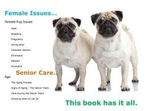 pug care guide the precious pug book complete pug care guide