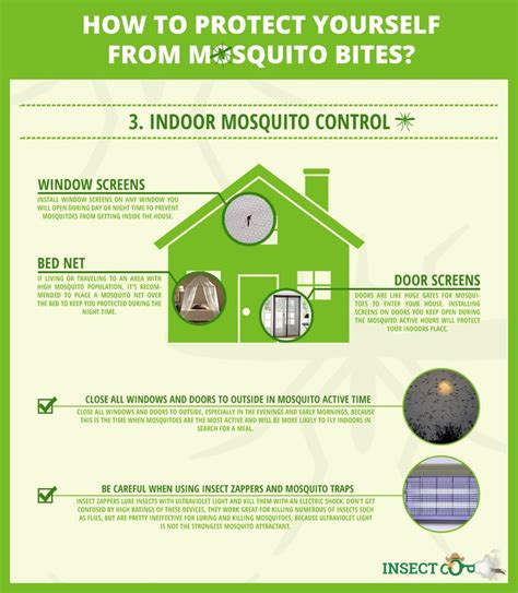 protect your home against mosquitoes how to protect
