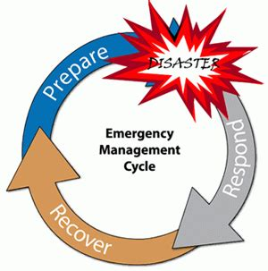 master your disaster your readiness response and recovery prep guide community edition volume 2 books emergency plans and annexes emergency management department