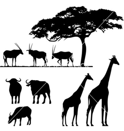 printable jungle animal silhouettes african animals silhouettes vector by lakalla image