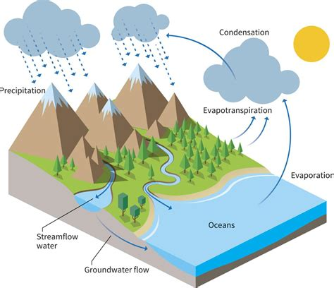 a diagram of the water cycle water cycle project ideas