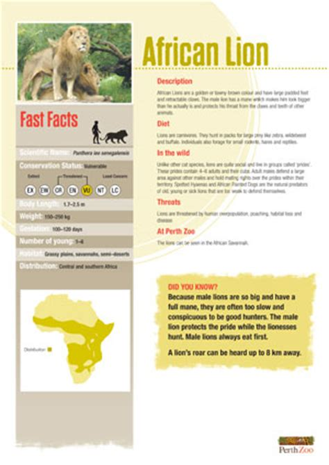 printable animal fact sheets achievement 3a have each scout pick an animal cut out