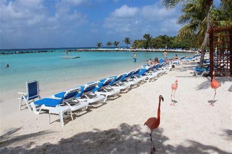 cruises only aruba 62 best oranjestad aruba cruise port views images on