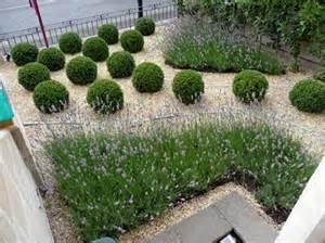 85 best images about contemporary lavender garden on pinterest gardens gravel garden and