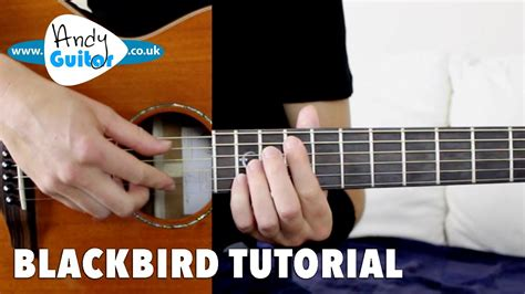 tutorial fingerstyle blackbird guitar lesson tutorial fingerstyle the beatles
