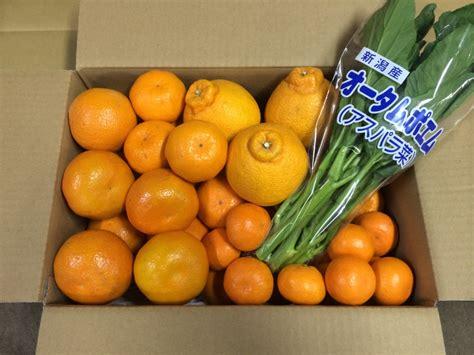 j fruit shop 渡辺 正人のバイヤーブログ just another バイヤーブログ site