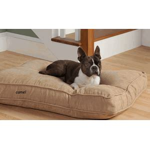 How To Clean Pillow Pet by Perfectfit Pet Clean Fresh Floor Pillow