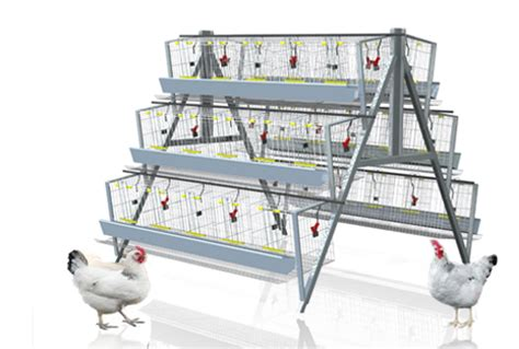 House Design Floor Plan Philippines 120 Birds Chicken Battery Cages Ecochicks Poultry Ltd