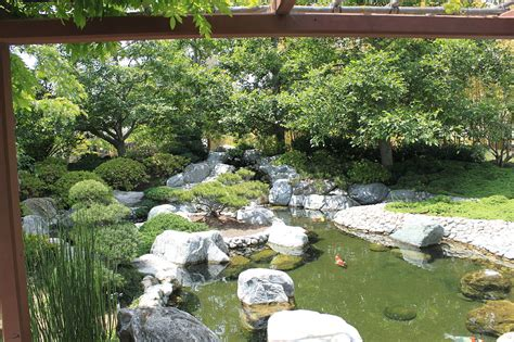 koi pond in backyard file japanese friendship garden path koi pond 5 jpg wikimedia commons