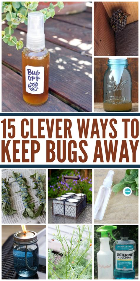 15 clever ways to add 15 clever ways to get rid of bugs