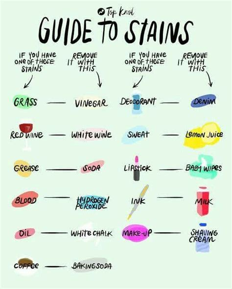 25 best ideas about stain removers on stain