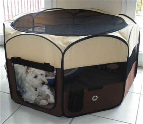 recinti per cani da interno ricerche correlate a recinti per cani da interno prezzo