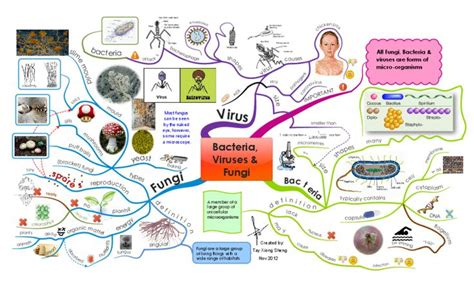 Virus Of The Mind The New Science Of The Meme - 28 best images about science mind maps on pinterest