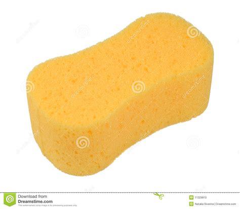 bathroom sponge bath sponge stock photo image of scrub isolated