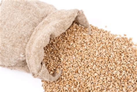 whole grains rich in fibre foods high in fiber guide to fiber rich foods