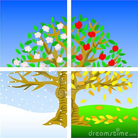 tree seasons come seasons 1848691815 four seasons justping blogspot com seasons seasons trees and four seasons
