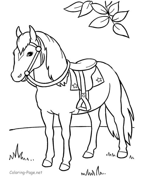 horse coloring page saddle horse