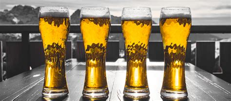 sede regione marche nasce marche di birra l associazione di produttori della
