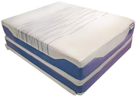 Why Are Tempur Mattresses So Expensive by Tempur Mattress Topper Australia Bed Bug Zippered