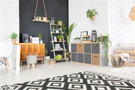 plants for apartments best plants for apartments the essential guide home logic