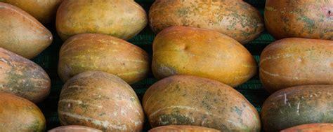Alat Untuk Menyerut Buah Blewah manfaat buah blewah yang baik untuk kesehatan tubuh