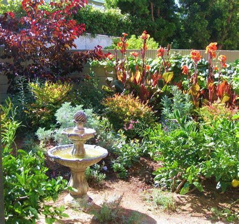 westminister ca lush ca native drought tolerant garden