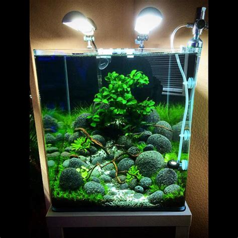 design aquarium nano inspirational aquascape 7 apsa