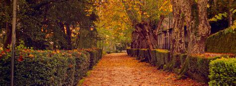 giardino in autunno giardinaggio autunnale lavori da fare in giardino e