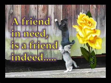 A Friend In Need Is A Friend Indeed Sle Essay by A Friend In Need Is A Friend Indeed Pictures Photos And Images For