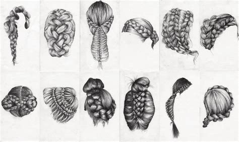 Drawing Of A With Braids by Braid Study Ongoing Munns