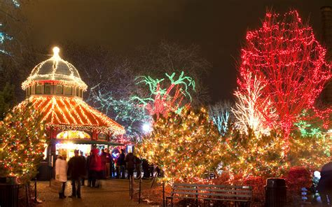 things to do with christmas lights things to do for with in chicago minitime