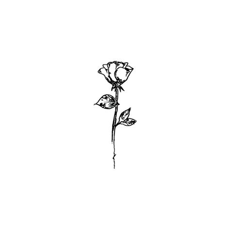 simple rose tattoo drawing best 25 rose drawing simple ideas on pinterest rose