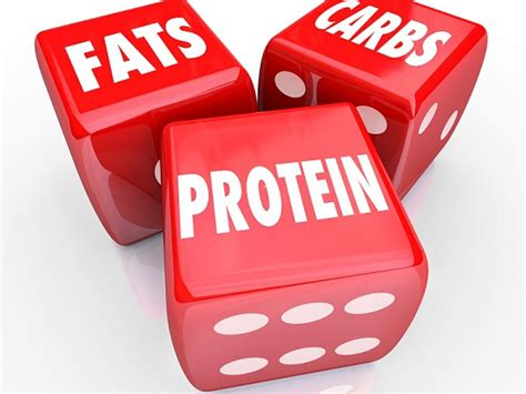 protein and carbs the big 3 protein carbs and fats