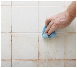 remove moisture from bathroom paul davis restoration of lexington removing water stain