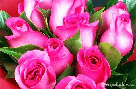 imagenes a rosas ramo de rosas rosas en regalador com