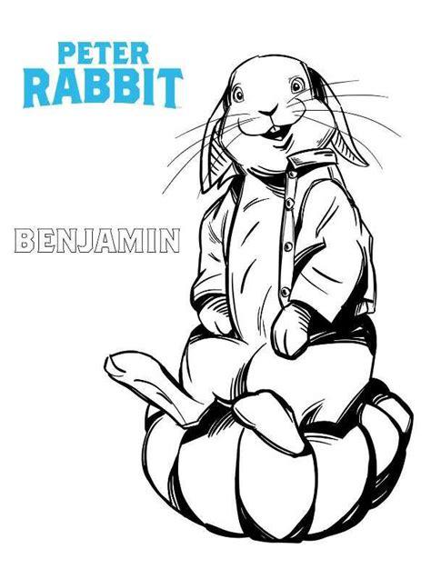 filme schauen pieter konijn kids n fun de 13 ausmalbilder von peter hase