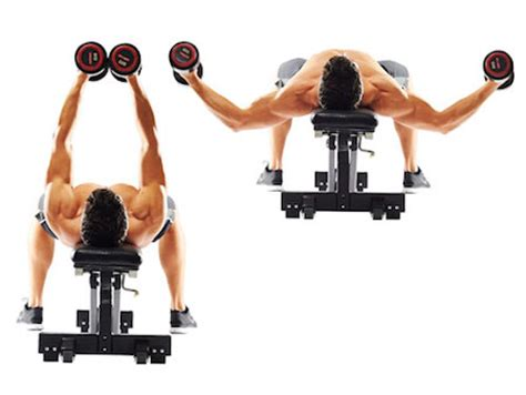 dumbbell bench fly the 13 best chest exercises to pummel your pecs and build