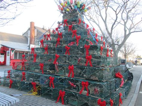 how to dismantle a christmas tree the end of the season for the lobster pot tree cape cod wave