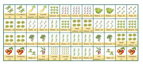 companion planting vegetable garden layout companion planting layout year help with layout